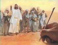 Libro De Mateo Escuela Sabatica II Trimestre 2016 - Copy (2)